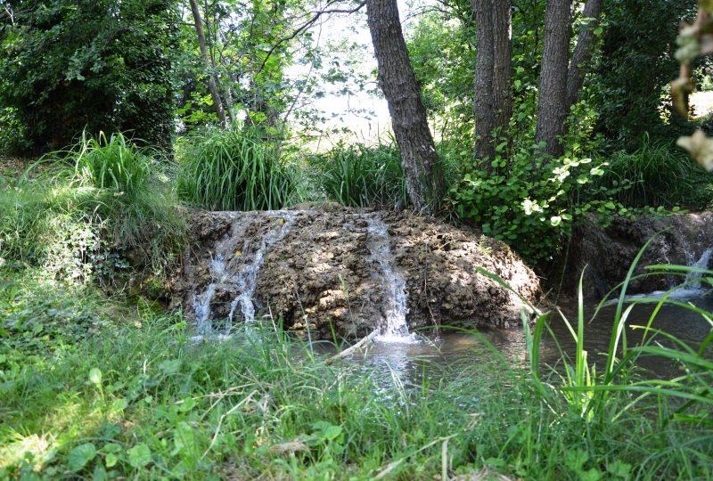L'étang Saint Louis à Suze-la-Rousse - 0