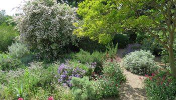 Jardin de l'Harmas