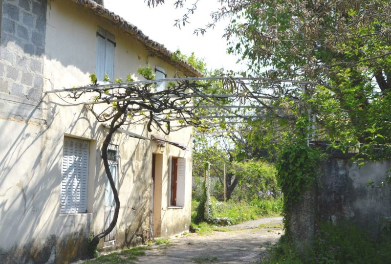 Gîte Durand à Saint-Paul-Trois-Châteaux - 5