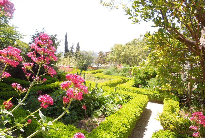 Jardin des Herbes à La Garde-Adhémar - 2