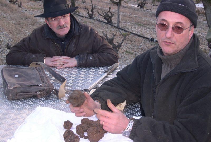 Week-end truffe : à la découverte de la truffe noire à La Garde-Adhémar - 2