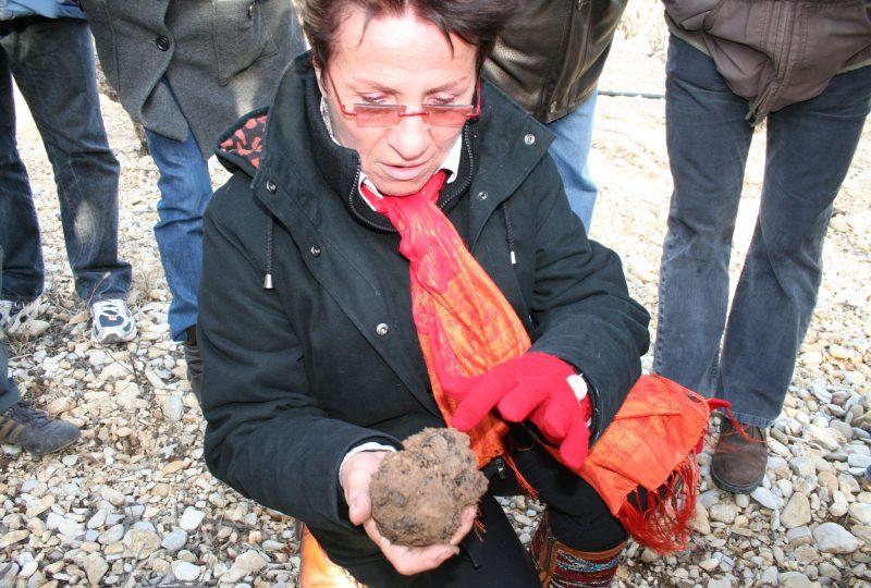 Week-end truffe : à la découverte de la truffe noire à La Garde-Adhémar - 4