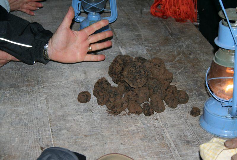 Week-end truffe : à la découverte de la truffe noire à La Garde-Adhémar - 6