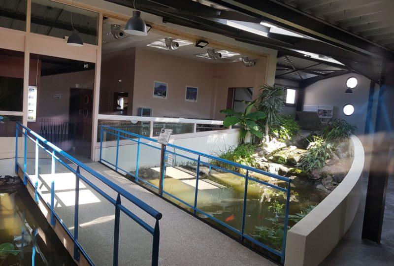Aquarium des Tropiques à Allex - 2